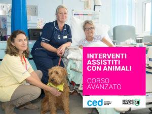 INTERVENTI ASSISTITI CON ANIMALI (IAA) - LIVELLO AVANZATO